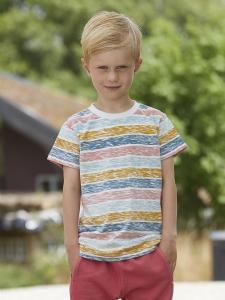 Small Rags SS T-shirt Randig
